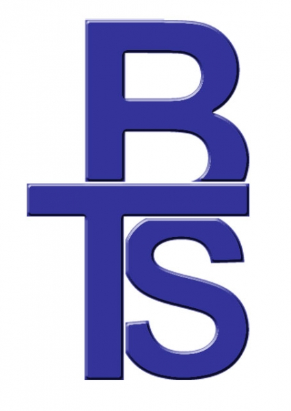 BTS Accounting and Consulting Services