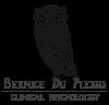 Bernice du Plessis